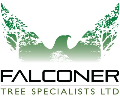 FALCONER-TREE-SPECIALISTS-LOGO-green-large